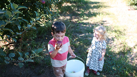 andthenthey apple picking ro